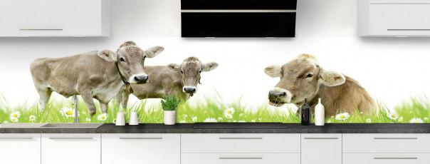 Crédence de cuisine Vaches panoramique motif inversé