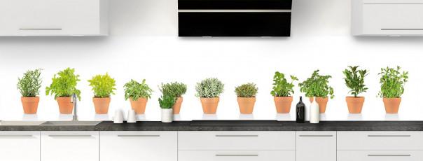 Crédence de cuisine Plantes en pot panoramique motif inversé