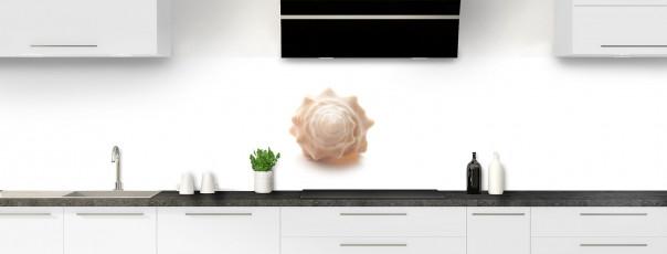 Crédence de cuisine Coquillage panoramique