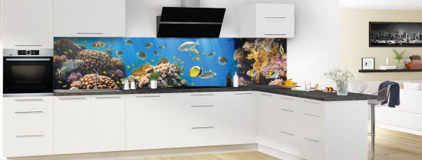 Crédence de cuisine Poissons exotiques panoramique motif inversé en perspective