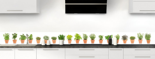 Crédence de cuisine Plantes en pot dosseret