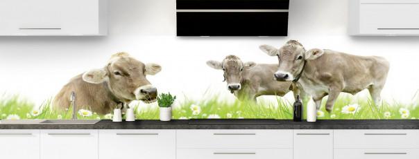 Crédence de cuisine Vaches panoramique