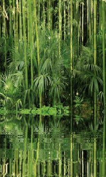 Crédence Bambou au bord de l'eau