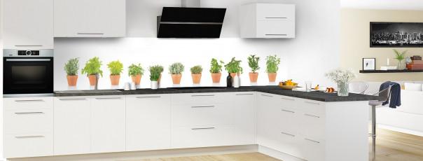 Crédence de cuisine Plantes en pot panoramique motif inversé en perspective