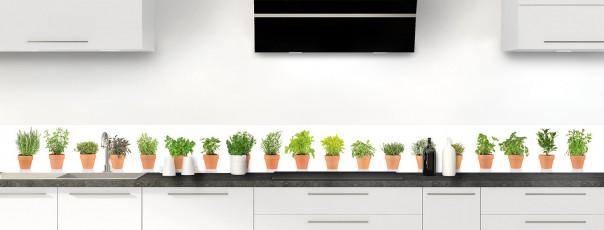 Crédence de cuisine Plantes en pot dosseret motif inversé