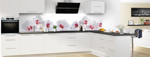 Crédence de cuisine Orchidées blanches panoramique en perspective