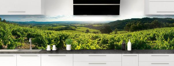Crédence de cuisine Vignes panoramique motif inversé