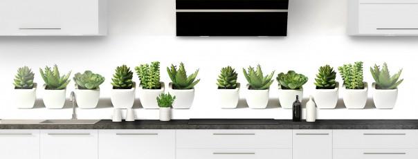 Crédence de cuisine Cactus panoramique