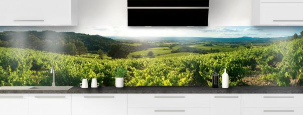 Crédence de cuisine Vignes panoramique