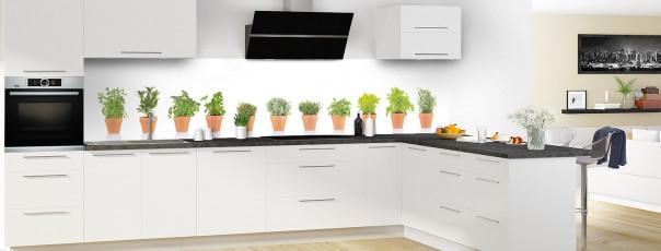 Crédence de cuisine Plantes en pot panoramique en perspective