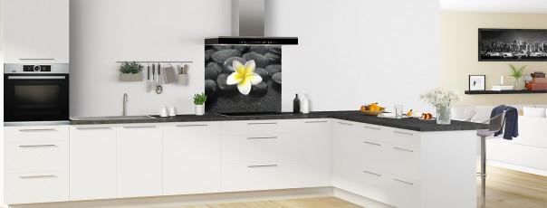 Crédence de cuisine Galets noirs et fleur de Plumeria fond de hotte en perspective