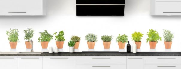 Crédence de cuisine Plantes en pot panoramique