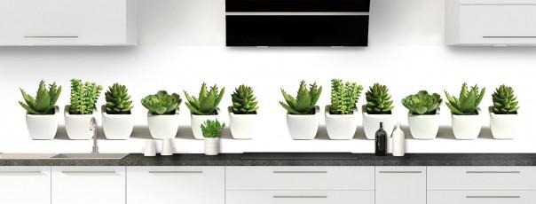 Crédence de cuisine Cactus panoramique motif inversé