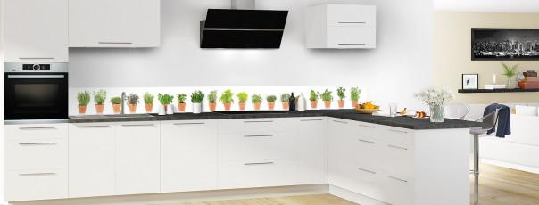 Crédence de cuisine Plantes en pot dosseret motif inversé en perspective