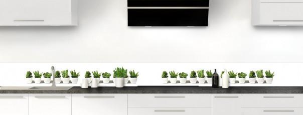 Crédence de cuisine Cactus dosseret