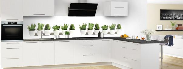 Crédence de cuisine Cactus panoramique motif inversé en perspective