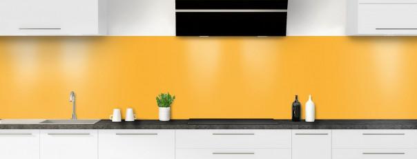 Crédence de cuisine Abricot panoramique