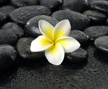 Crédence Galets noirs et fleur de Plumeria